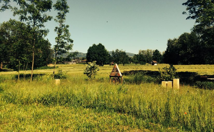 Bienenlehrpfad in Hohenems